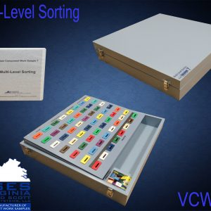 VCWS #7 Multi Level Sorting
